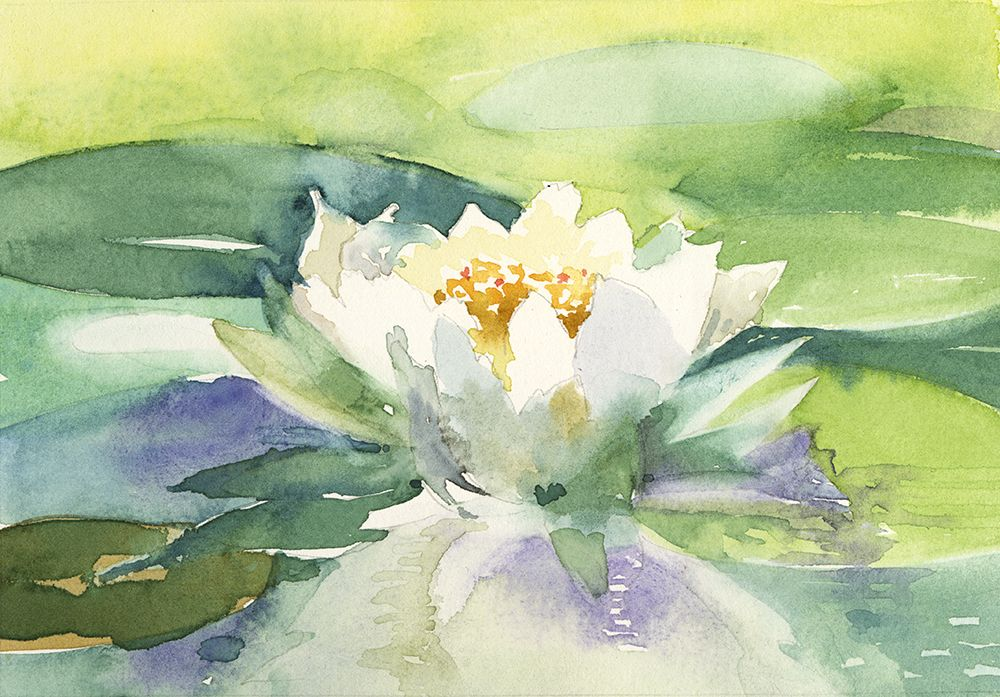 Watercolor, Waterlily, by Jake Marshall, 2015.