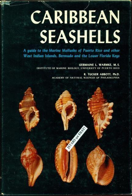 Caribbean Seashells Book Guide To Mollusks Of Puerto Rico