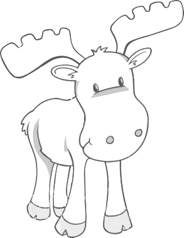 Graphics Templates Animal Coloring Pages Moose Crafts Coloring Pages For Kids