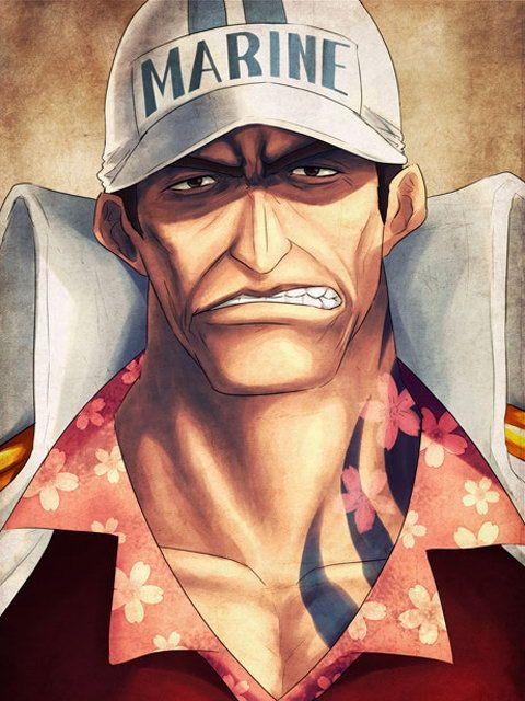 Akainu(Sakazuki) - One Piece,Anime