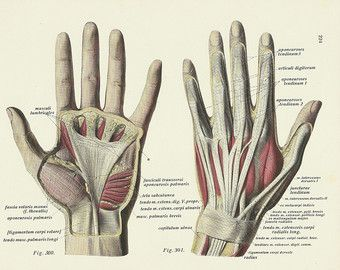 720adfdf92747e8ceeecafb5765d4fdb diagram of how to wash your hands vintage old google search