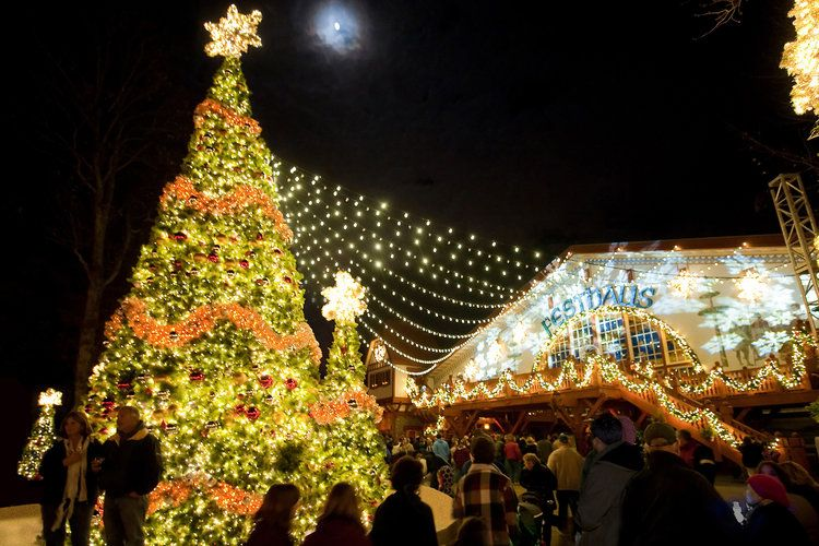11 Dazzling and Quirky Christmas Trees Around the Country