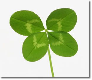 8 Ways To Bring Good Luck Into Your Life Lucky Charms And Rituals
