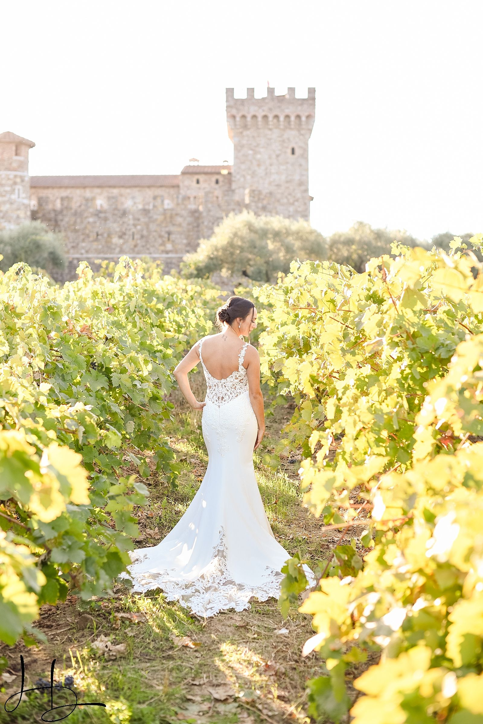 A Gorgeous Bride In The Midst Of A Beautiful Vineyard With A Castle