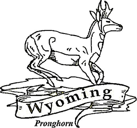 Wyoming Coloring Page Flower Coloring Pages Coloring Pages Wyoming