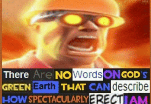 There Are No Words On God S Green Earth Blank Meme Template Tf2 Memes Stupid Memes Funny Profile Pictures