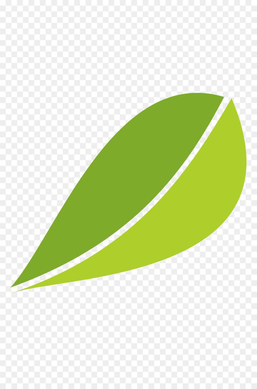 White Tea Fuding Green Tea Leaf Fuding White Tea Leaves Leaves Vector Material White Tea Tea Leaves Green Tea