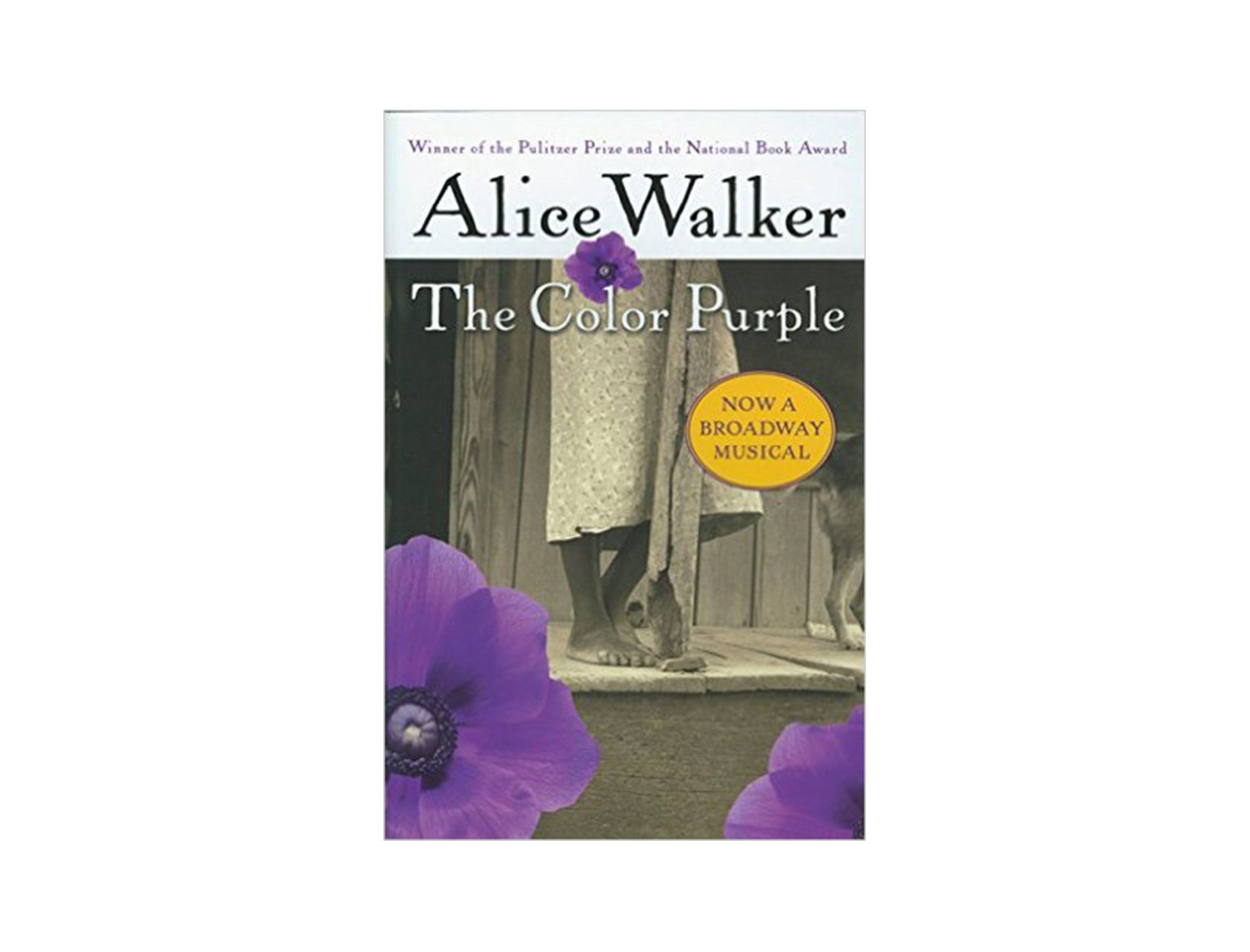 the color purple novel analysis essay The essay explores the ways in which the novel the color purple was tailored to meet the genre requirements of musical theater when it was adapted for the broadway stage in 2006 specific attention is paid to how the color purple was rhetorically normalized to align it within the genre.