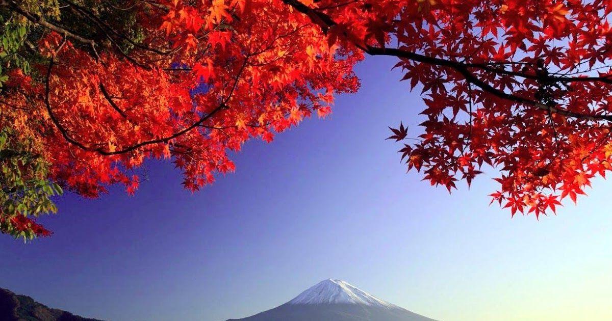 Menakjubkan 30 Wallpaper Pemandangan Emas Gambar Wallpaper Pemandangan Jepang Kumpulan Wallpaper Download W Di 2020 Pemandangan Lukisan Arsitektur Latar Belakang