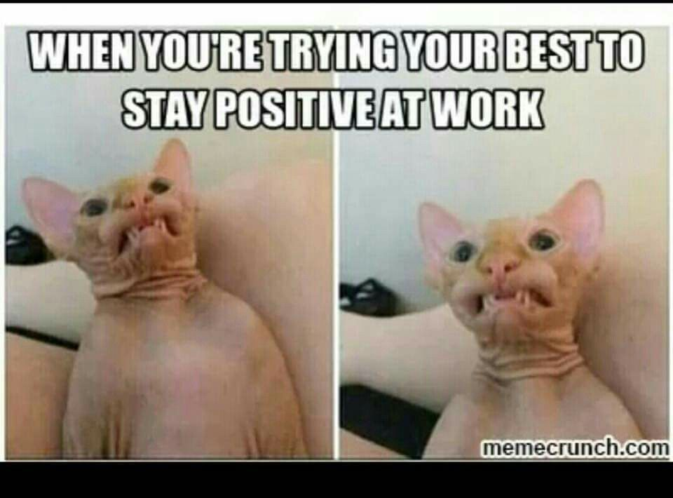 When Youre Trying Your Best To Stay Positive At Work Work Humor Nurse Humor Work Memes