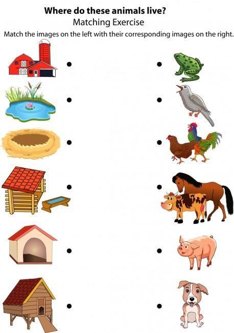 good morning show animal houses mfw k unit 05 nest animal homes farm animals preschool. Black Bedroom Furniture Sets. Home Design Ideas
