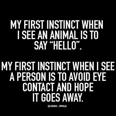 introvert quotes funny