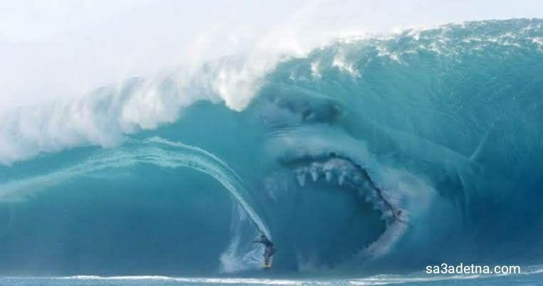 أخطر عشر شواطئ في العالم 1 شاطئ جانسباي يوجد هذاالشاطئ في جنوب افريقيا ويطلق عليه عاصمة الغوص مع القروش Scary Ocean Megalodon Megalodon Shark