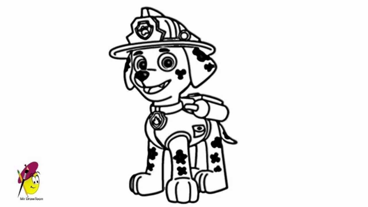 Marshall Paw Patrol How To Draw Marshall From Paw Patrol