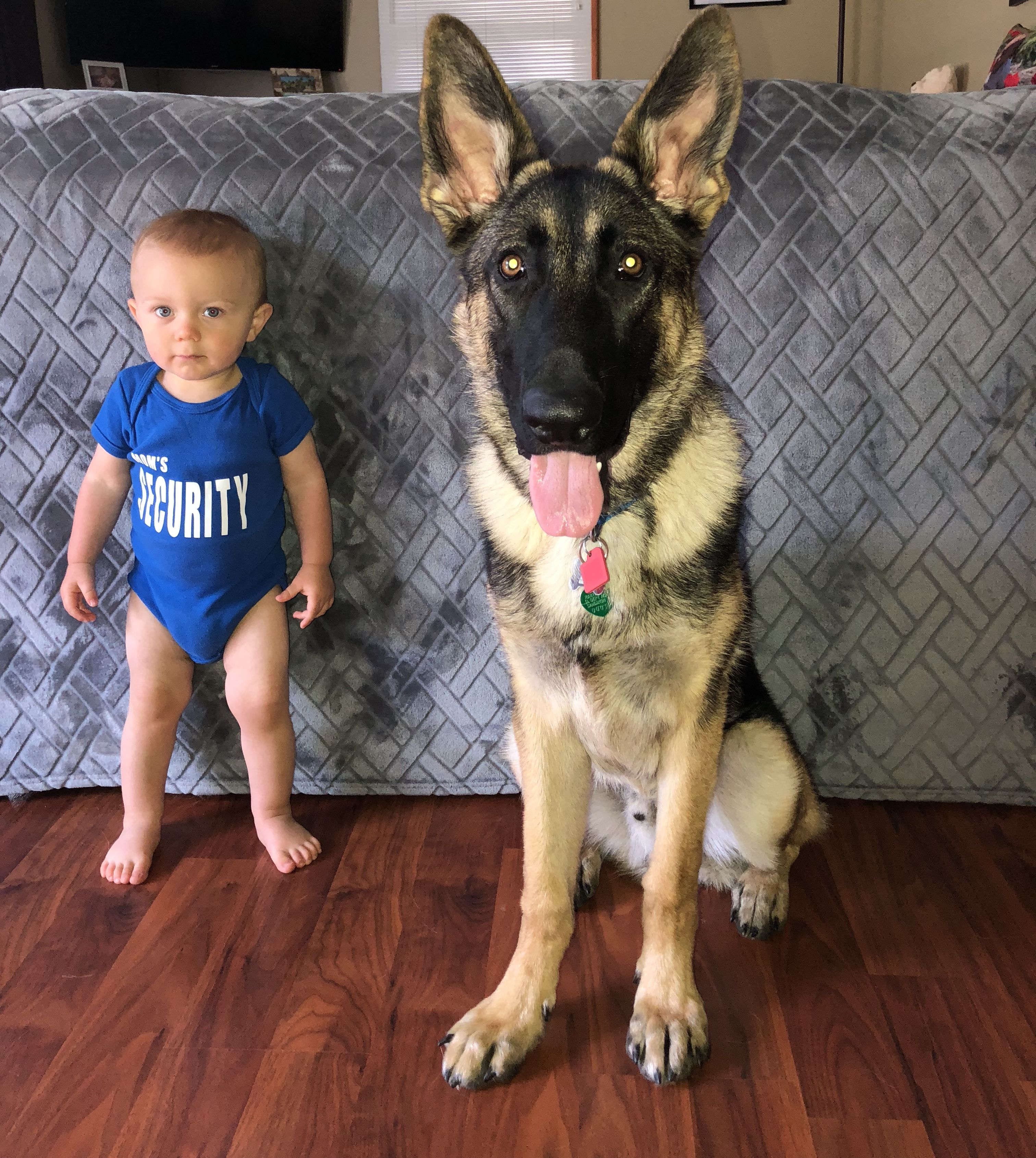 Mom S Security Security Team Baby And Dog Security Team German