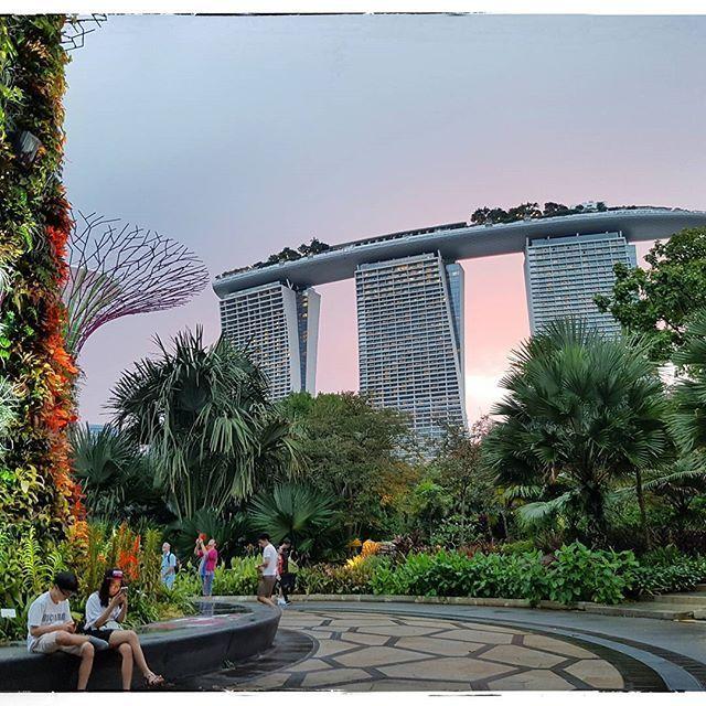Coucher de soleil - Singapour