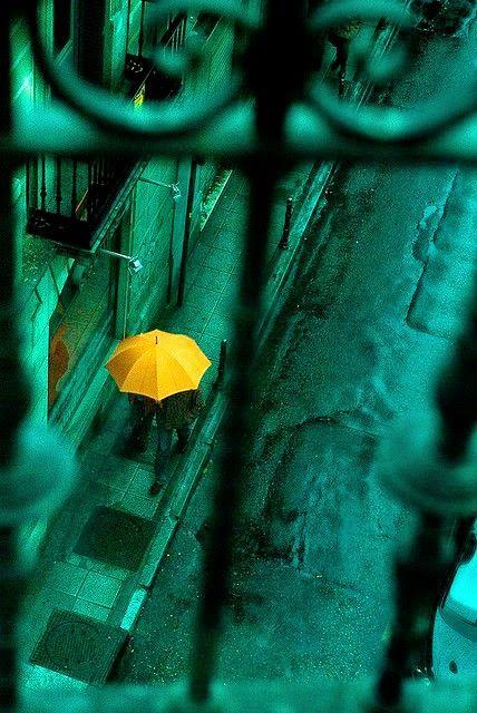 - Rainy Day