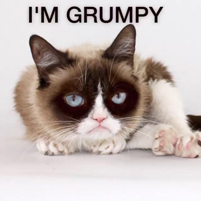 Sensation Grumpy Cat Died But Her Memes Shall