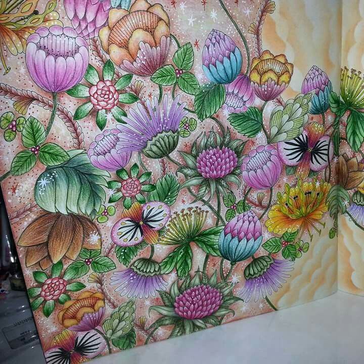 From Tropical World By Millie Marotta Millie Marotta Coloring Book Millie Marotta Tropical Millie Marotta Tropical Wonderland