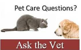 to Ask a Vet series of Animal Wellness Clinic of