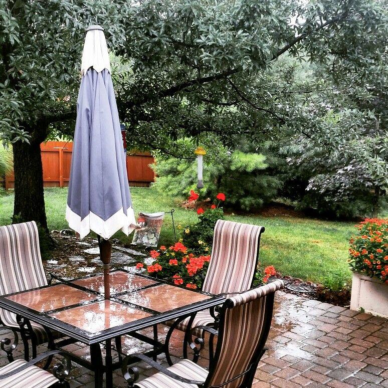 Summer rain backyard.