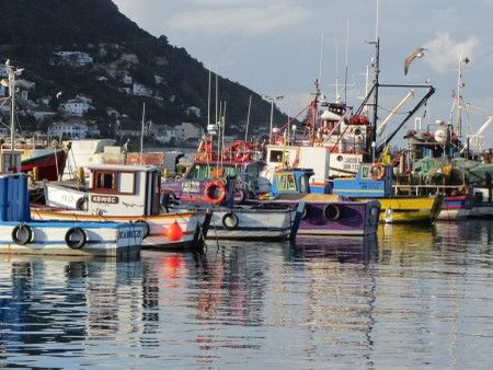 Self catering accommodation, Kalk Bay, Cape Town   Views of the Kalk Bay harbour from the Guesthouse