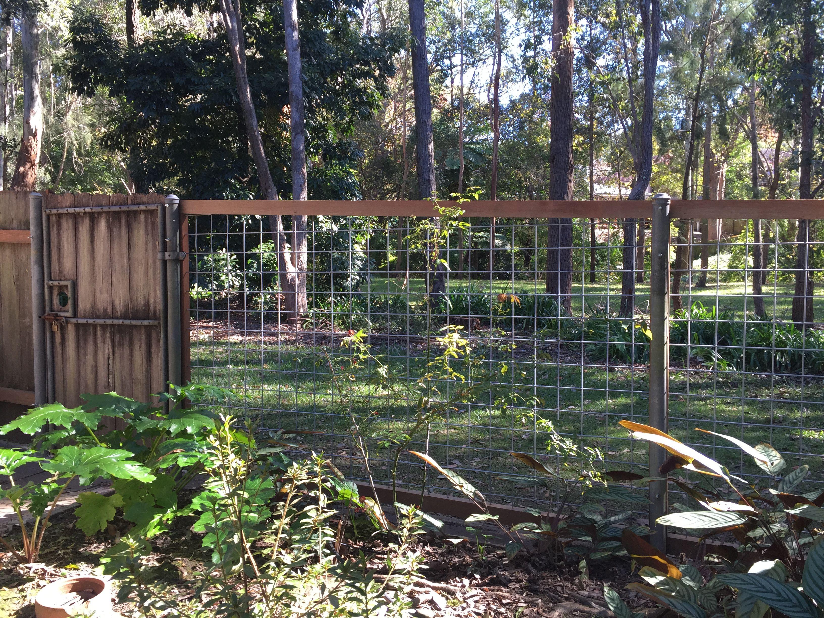 Borrowed landscape through a see through fence 100 x 100 x 5 mm ...