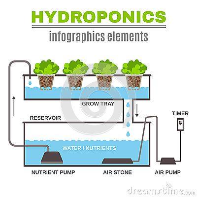 Pin by Just Trinkets on Hydroponics Pinterest Hydroponics - fresh blueprint sistem informasi adalah