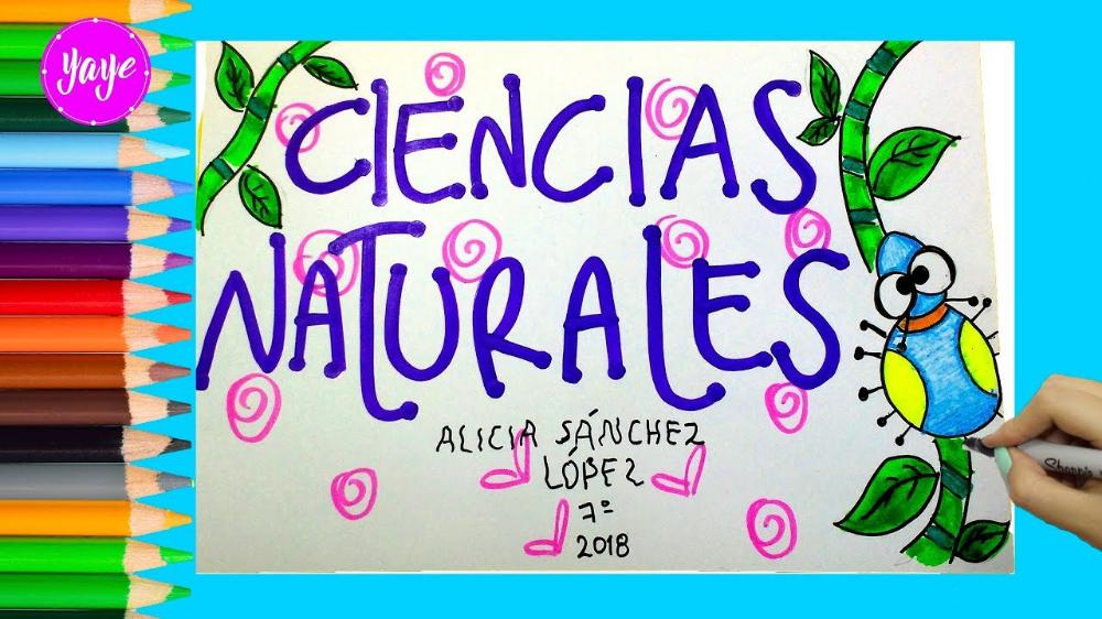 Dibujos De Ciencias Naturales Faciles Buscar Con Google Notebook