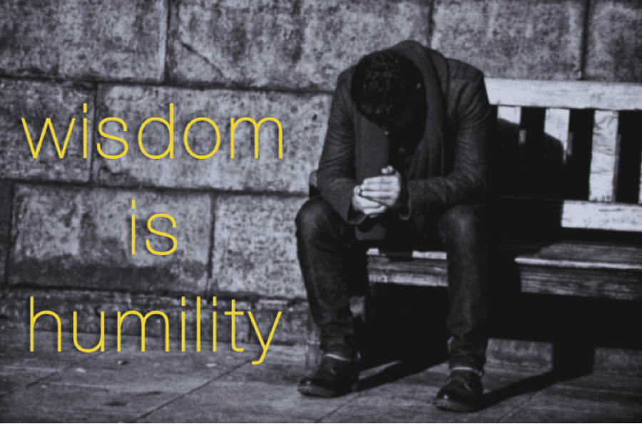 Wisdom is humility. -Dr. Marcia Sirota for the Ruthless Compassion Institute #WisdomWednesday