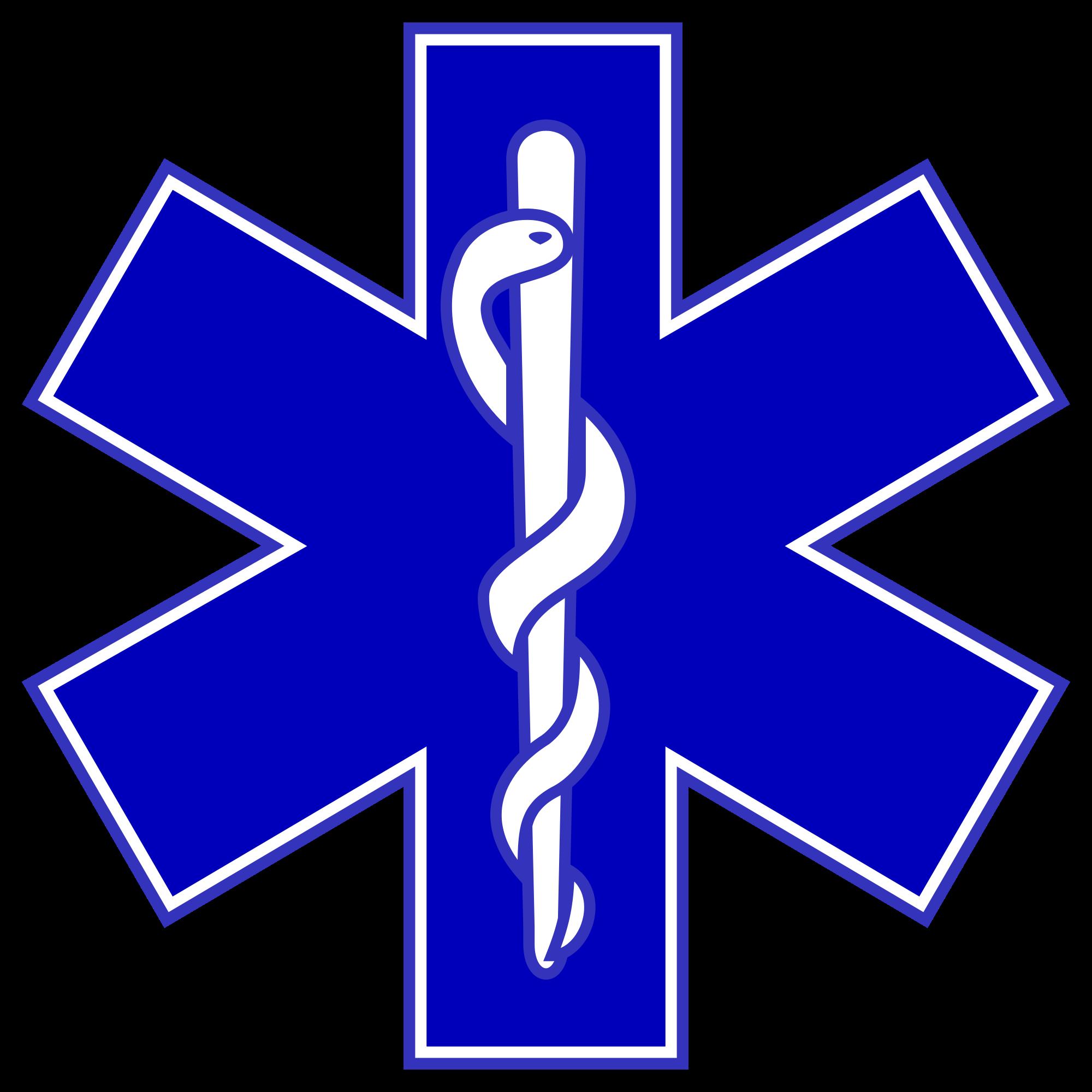 serpent symbolism wikipedia the free encyclopedia vinyl rh pinterest com Caduceus Symbol Meaning Caduceus Tattoo