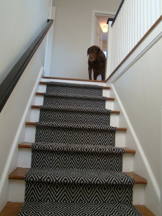 Best Black Carpet Runners For Stairs With Modern Pattern In 400 x 300