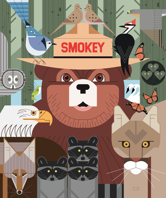 Pagina Inicial Twitter Bear Art Smokey The Bears Cartoon Park