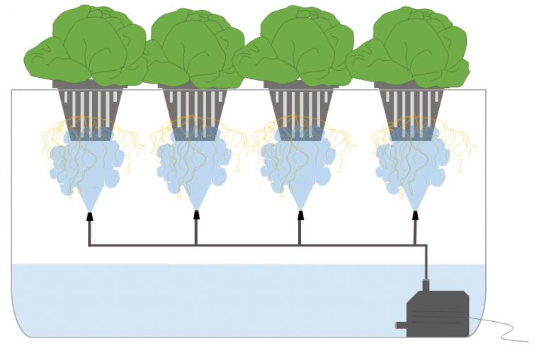 aeroponik system
