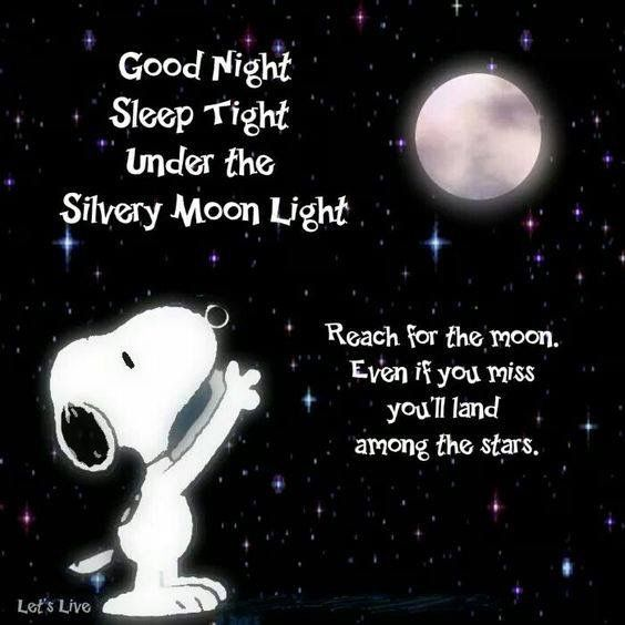 Good Night. Snoopy reach for noon land in Stars | Snoopy ...