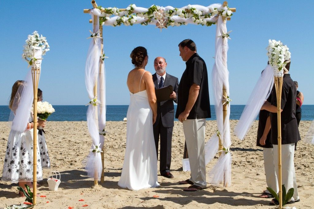 Cute minimalist two post beach wedding arch with bamboo wedding cute minimalist two post beach wedding arch with bamboo wedding arches seasonal beautiful pictures of junglespirit Image collections