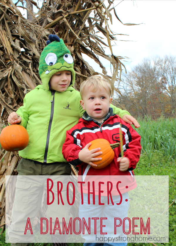 We have two boys and BOY are they different! Here's a Diamonte poem contrasting the two brothers. #Write31days
