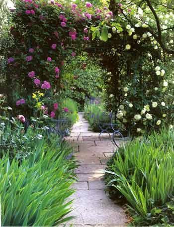 ARCH WAYS IN MY garden | believe that because we live in ...