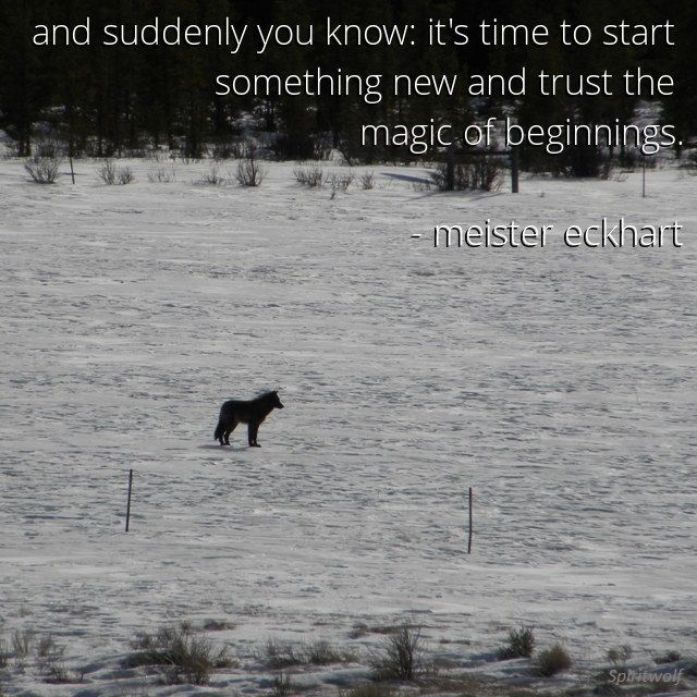 """""""And suddenly you know: It's time to start something new and trust the magic of beginnings."""" ― Meister Eckhart"""
