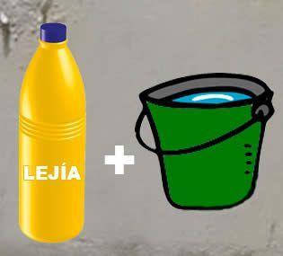 Quitar moho de las paredes con lej a y agua rem cass - Como quitar manchas de lejia ...