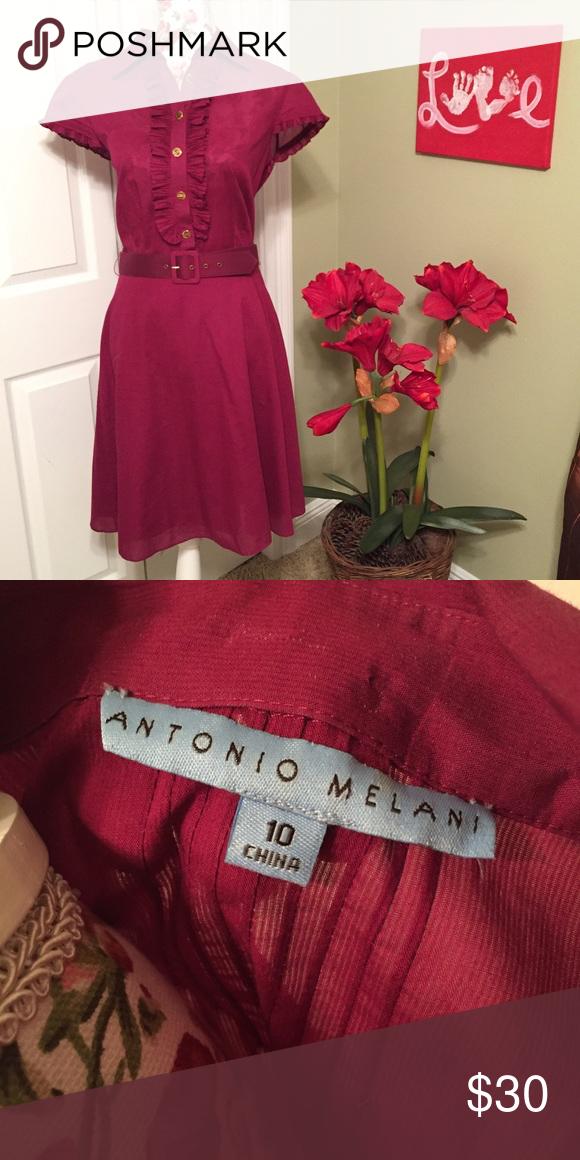Antonio Melani Belted Fit and Flare Fuchsia Dress Antonio Melani Belted Fit and Flare Fuchsia Dress ANTONIO MELANI Dresses