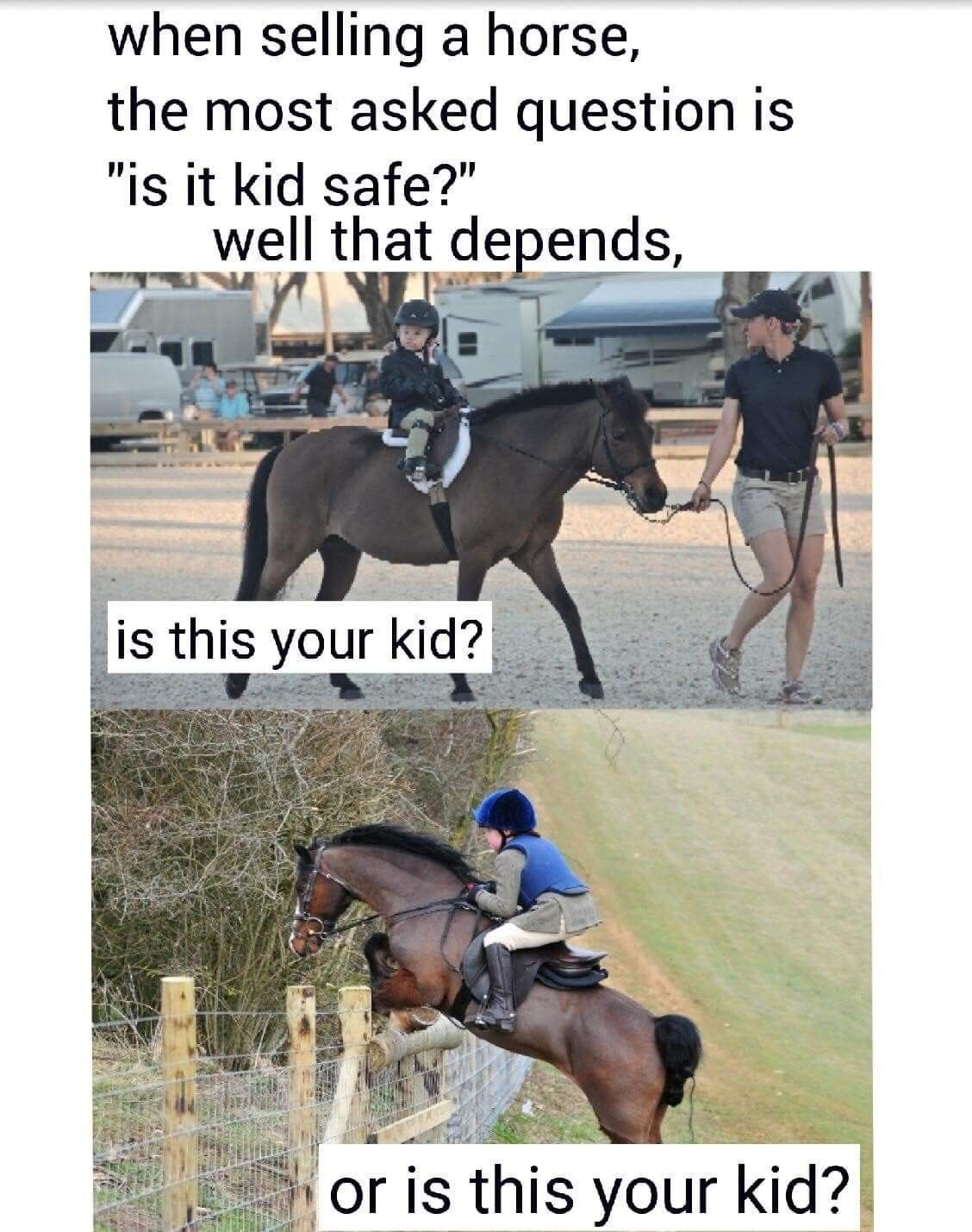 Pin By Marissa Andersen On Equestrian Quotes Funny Horse Memes Funny Horses Horse Quotes Funny