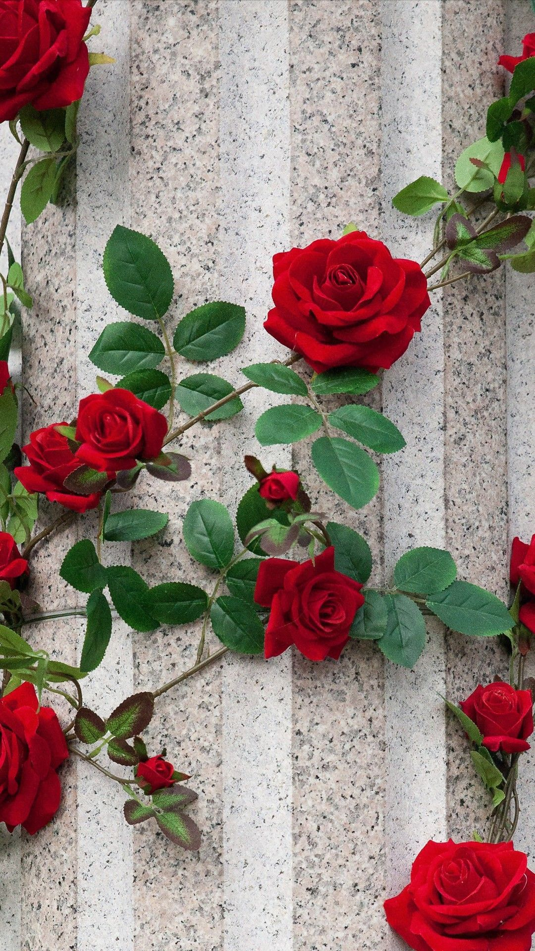 Pin By Qyyeyei On Wallpaper Flower Wallpaper Rose Wallpaper Red Roses