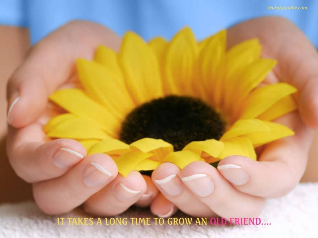 Friendship Image By Sivaditya Photobucket Friendship Quotes