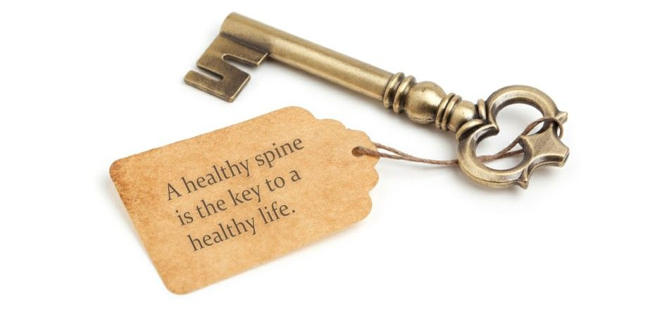 Image result for           quotes healthy spine