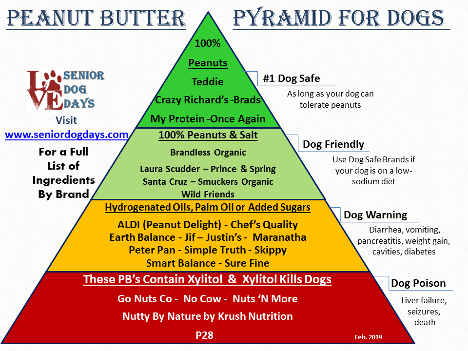 Safe Peanut Butter for Dogs: We Vet 28
