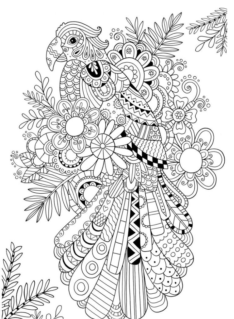 Pin By Brenda Whitehead On Coloring Pinterest Coloring Pages
