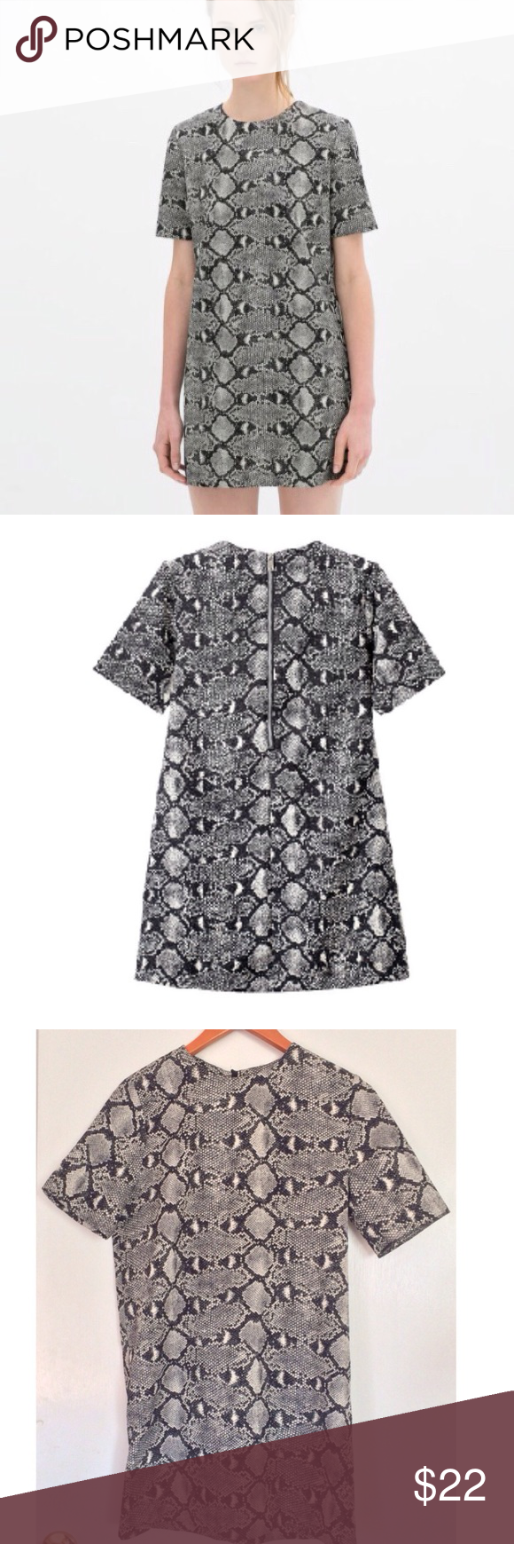 Zara Reptile Shift Mini Dress Zara Women....absolutely perfect. Reptile print shift mini dress. Exposed back zipper. Size M..19 in pit to pit, 16 in shoulder to shoulder, 23 pit to hem, 32 shoulder to hem. NO OFFERSPRICE FIRMBUY IT NOW OPTION ONLYI ONLY TRADE FOR CASH Dresses Mini