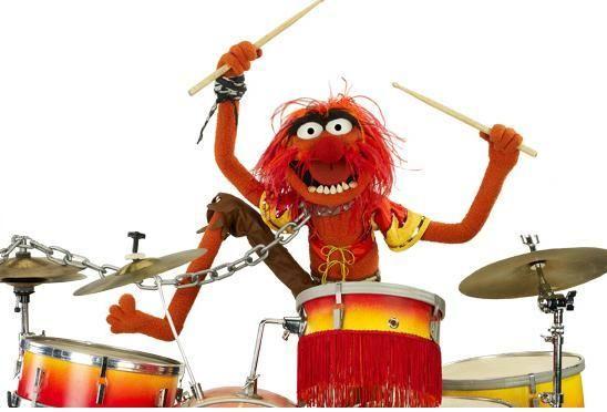 Image result for animal muppet drummer