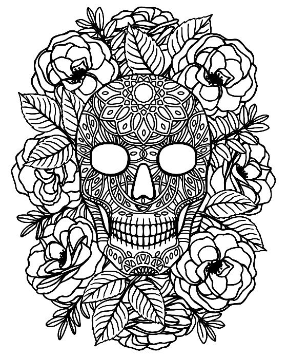 sugarskull colouring adult coloring pages free ios app